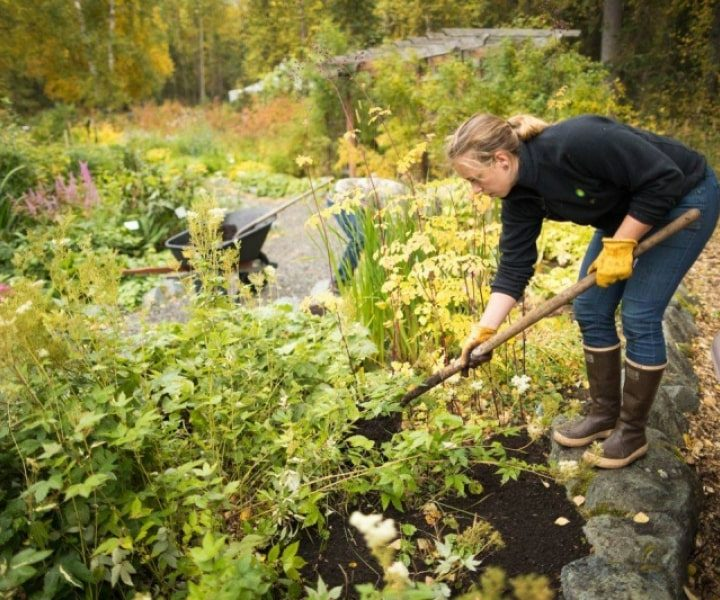 Gardening For Personal Growth