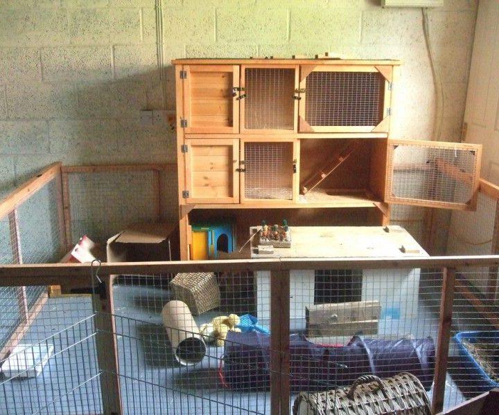 Indoor Rabbit Hutches