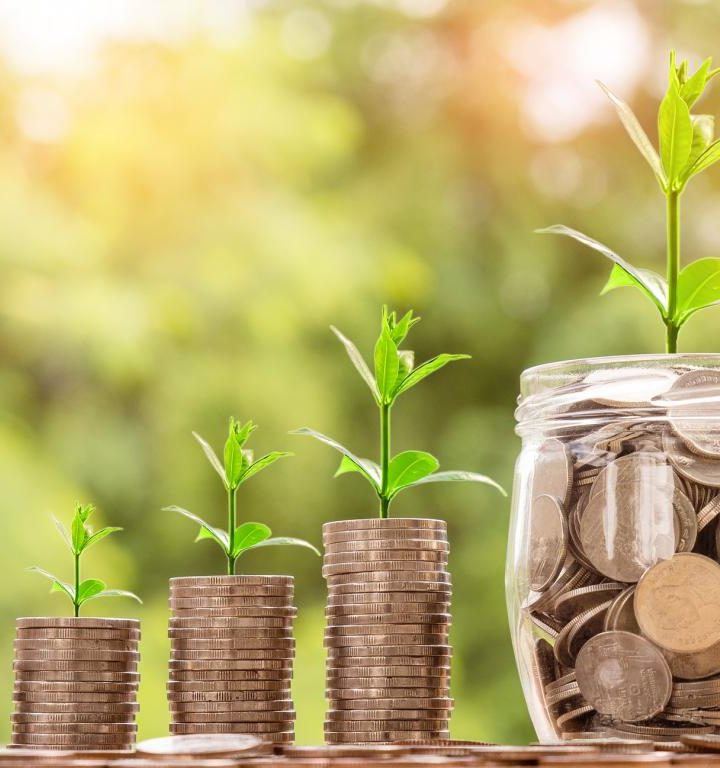 The Individual Retirement Account